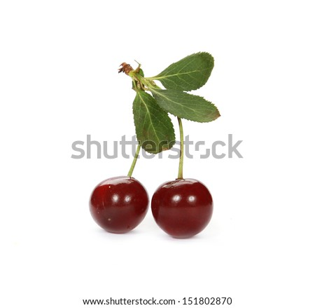 Sweet ripe cherry with leaf on white background