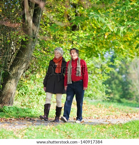 Sweet senior couple walking holding hands in the park - stock photo