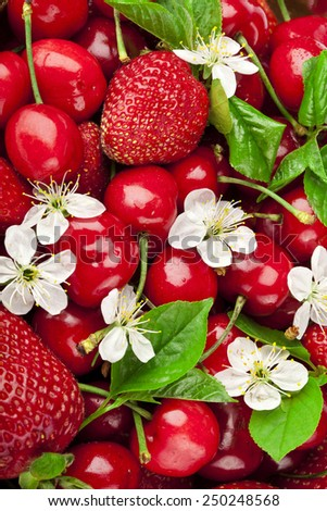 Sweet strawberry and cherries with flowers surface top view background - stock photo