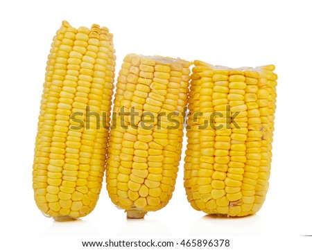 Sweet yellow corn isolated on white background.