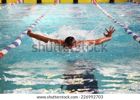 Swimmer in the swimming pool - butterfly style