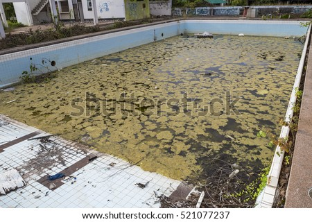 Image result for dirty swimming pool