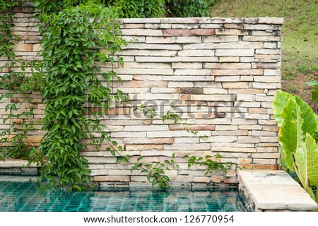swimming pool stone wall with ivy - stock photo