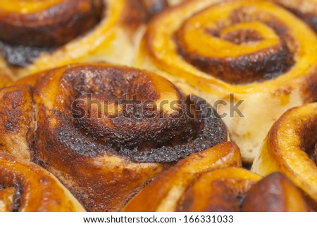 swirl shape cookies with cocoa
