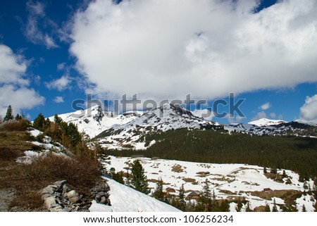 Swiss Alps in the Spring