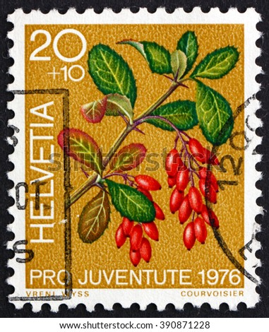 SWITZERLAND - CIRCA 1976: a stamp printed in the Switzerland shows Barberry, Berberis Vulgaris, Medicinal Forest Plant, circa 1976 - stock photo