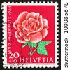 SWITZERLAND - CIRCA 1964: a stamp printed in the Switzerland shows Rose, Rosa, Flowering Plant, circa 1964 - stock photo