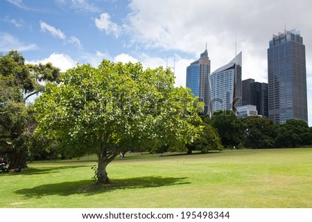 SYDNEY, AUSTRALIA - December 18, 2013; Early morning parkscape view of the CBD Sydney. The park is Parade Ground, Royal Botanic Gardens on December 18 2013  - stock photo