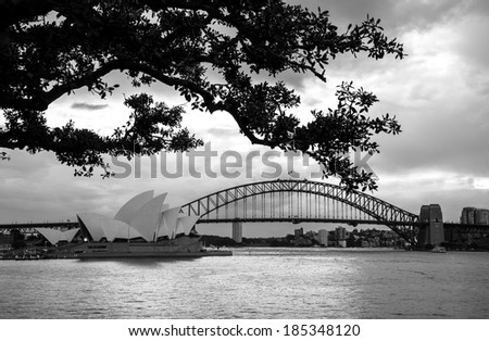 Sydney, Australia - July 11, 2010 : Sydney Opera House and Sydney skyline at dusk. Taken from Mrs. Macquarie's Chair under a tree. - stock photo