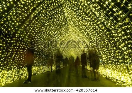 Sydney, Australia - 2016, May 27: Annual outdoor lighting festival Vivid Sydney: Festival of Light, Music & Ideas. Cathedral of Light light installation in The Royal Botanic Garden - stock photo
