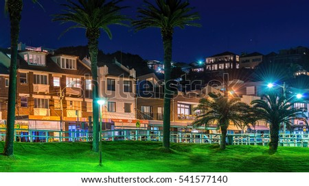 Sydney, Australia - May 28, 2016: Bronte Road viewed from Bronte Beach Park, Sydney, New South Wales, Australia. Night image showing shops and residential apartments that line this coastal shoreline.