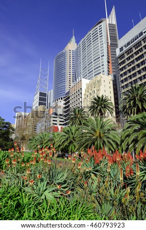 Sydney City skyline with gardens in foreground, Australia