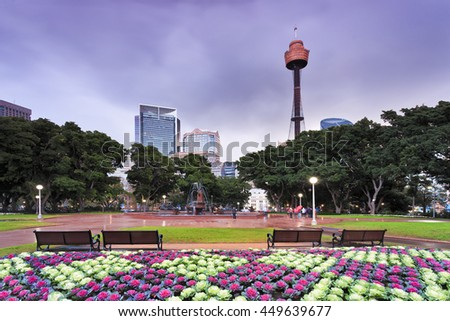 Sydney's famous historic and modern Hyde park design and architecture at sunset. Colourful flowers , benches and blurred fountain in front of green trees and city towers.