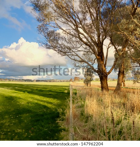symbol of drought versus green pasture equally divided - stock photo