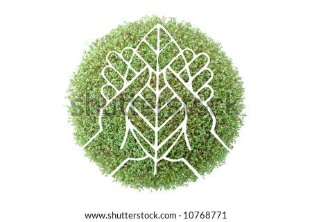Symbol of hands with tree leaf superimposed on green plant - recycled paper concept - stock photo