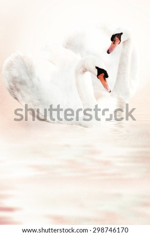 Symbol of love. Background of romantic swans on old paper texture. - stock photo