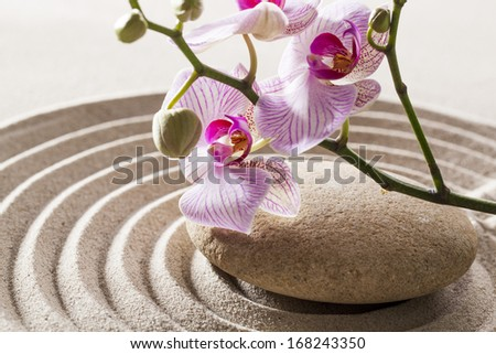 symbol of zen femininity - stock photo