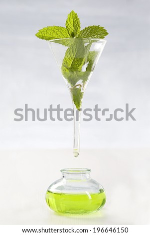 symbol picture of extracting the essential oil- Peppermint essential oil  - stock photo