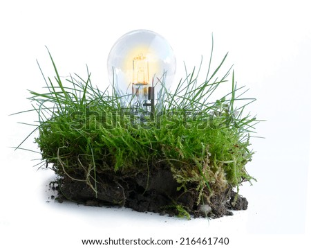 Symbol, renewable energy, light bulb in a piece of grass, innovative in environmental protection - stock photo