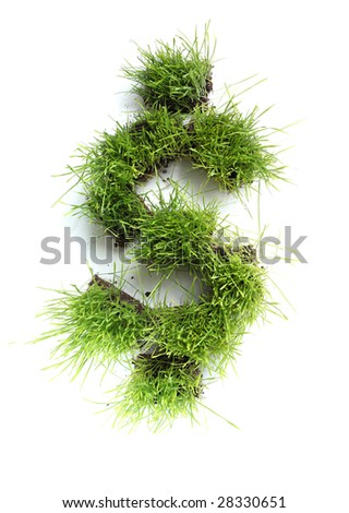 Symbols made of grass - dollar sign - stock photo