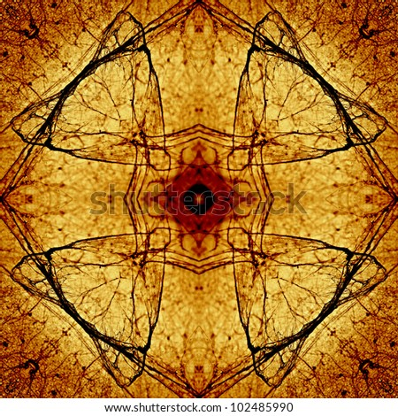 Symmetrical pattern to the background or poster. The pattern created from a photo of a spider's web. Abstracts. - stock photo