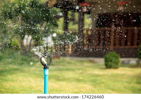 System for watering the lawn - stock photo