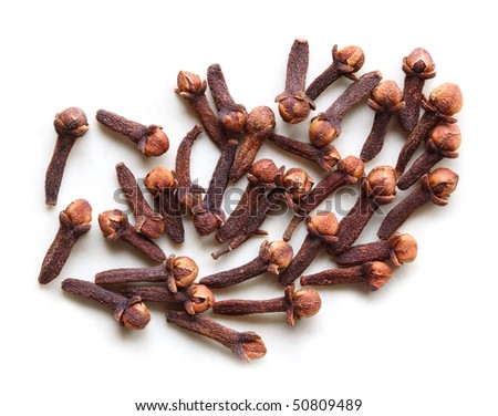 Syzygium aromaticum, Eugenia aromaticum, Eugenia caryophyllata cloves isolated on white