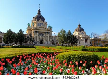 Szechenyi Spa with flower - Budapest, Hungary - stock photo