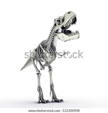 t-rex skeleton isolated on white background - stock photo