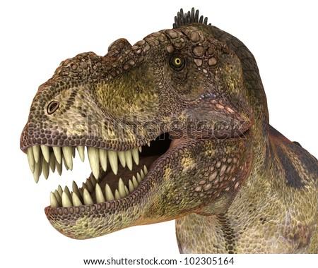 t rex staring - stock photo
