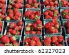 Table full of pints of strawberries out in the sun for sale at a market. - stock photo