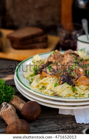 Tagliatelle Pasta with Beef Meatballs, Wild Mushrooms and Poppy Seeds, copy space for your text