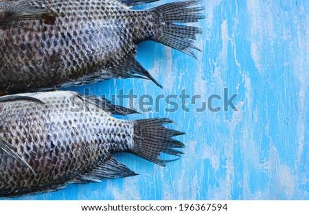 Tail Tilapia fish - stock photo