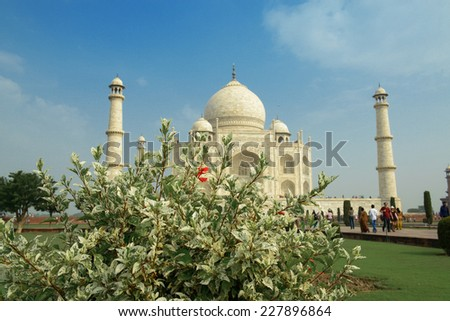 Taj Mahal, India. A famous historical monument taken with green bush in front - stock photo