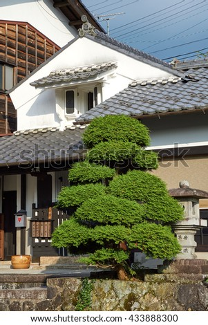 TAKAYAMA, JAPAN - AUGUST 2015: An old white town house and cypress tree in downtown Takayama, in Japan's mountainous Gifu Prefecture.