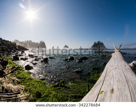 Taken at Rialto Beach in the Olympic National Park in Washington - stock photo