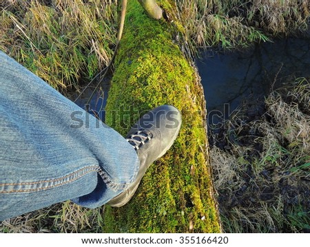 Taking step on fallen tree to cross the stream - stock photo