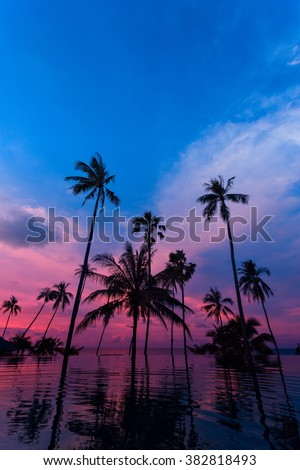Tall coconut palm trees silhouettes at twilight sky reflected in water. Picturesque romantic sunset or sunrise scene on Koh Samui island, Thailand