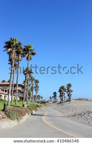 Tall palms growing next to warm sands of Mandalay Beach in Oxnard, California - stock photo