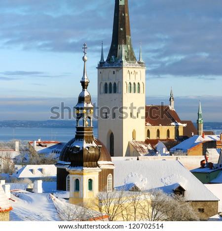 Tallinn city. Estonia. Snow on trees in winter - stock photo
