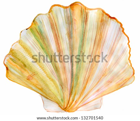 Tan Radial Seashell Isolated on White Background. watercolor - stock photo