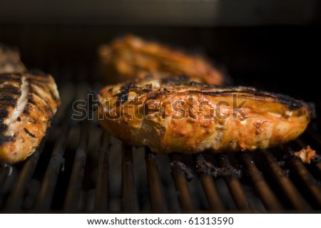 Tandoori Chicken Breasts on the Grill - stock photo