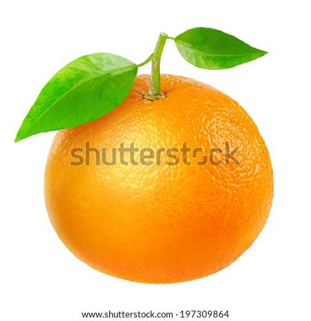 Tangerine isolated on white - stock photo