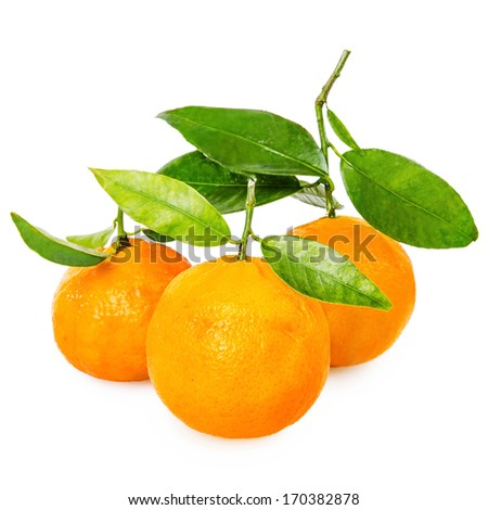 Tangerine with segments on a white background reduce