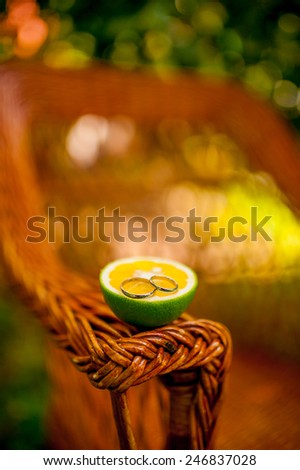 Tangerines in Montenegro - stock photo
