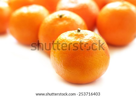 Tangerines on white background