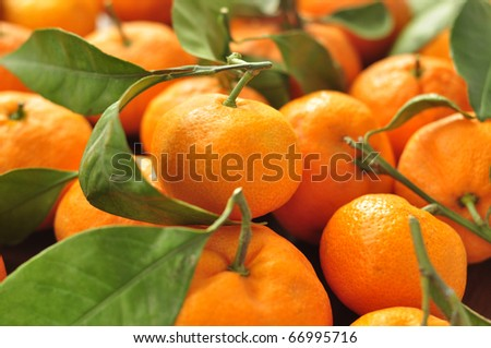 Tangerines with leaves - stock photo