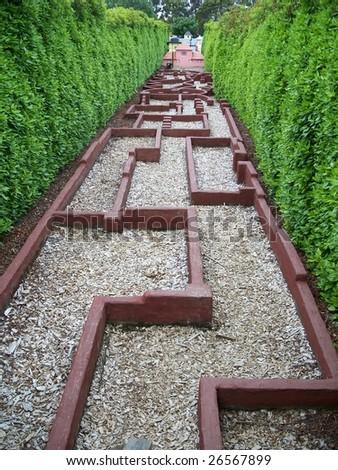 Tangled walkway - stock photo