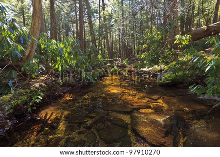 Tannin colored mountain stream and rocks in spring - stock photo