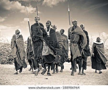 TANZANIA, AFRICA-FEBRUARY  9, 2014: Masai warriors dancing traditional jumps as cultural ceremony, review of daily life of local people on February 9, 2014. Tanzania. - stock photo